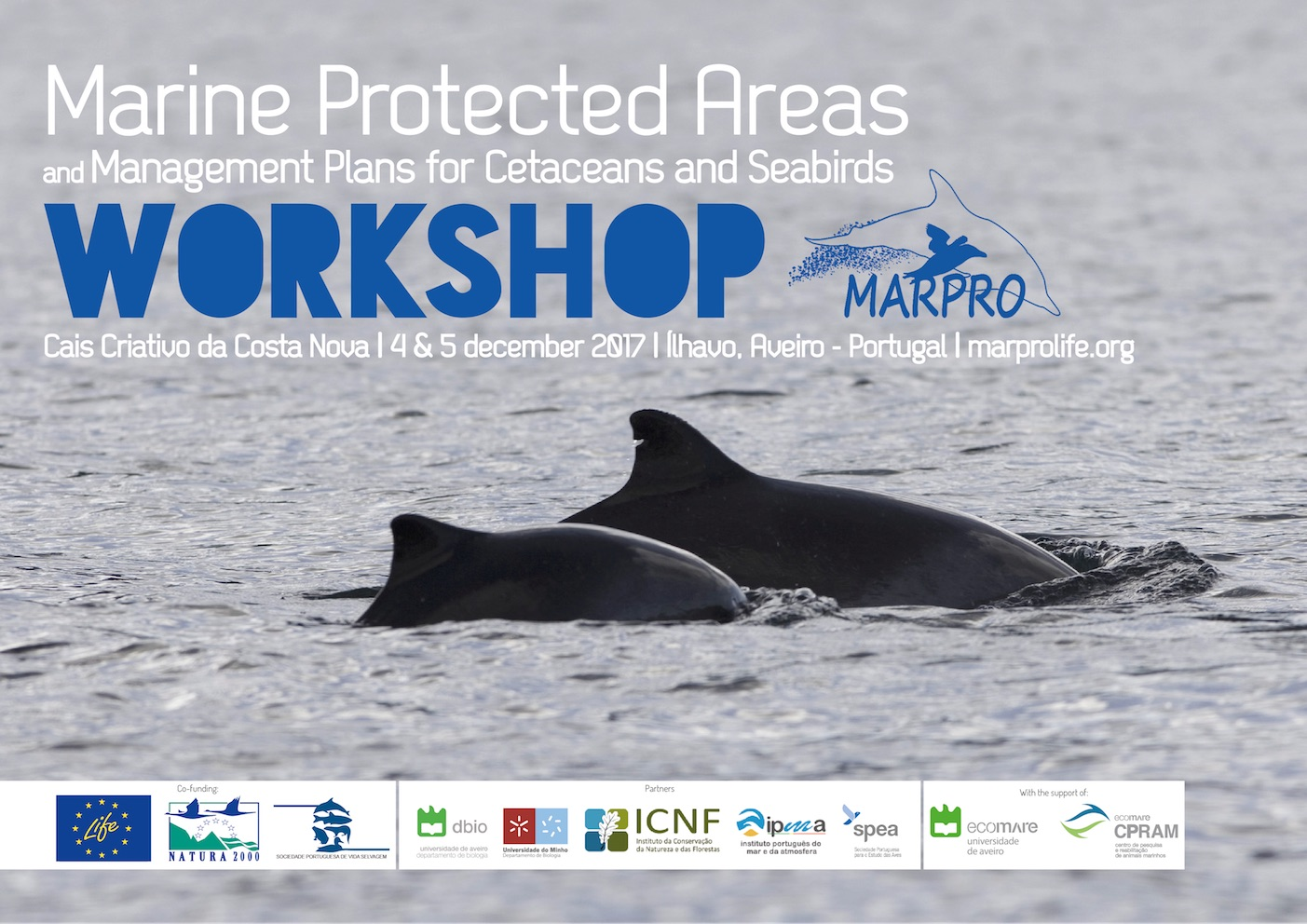 Poster LIFE+ MarPro Workshop 2017: Marine Protected Areas and Management Plans for Cetaceans and Seabirds