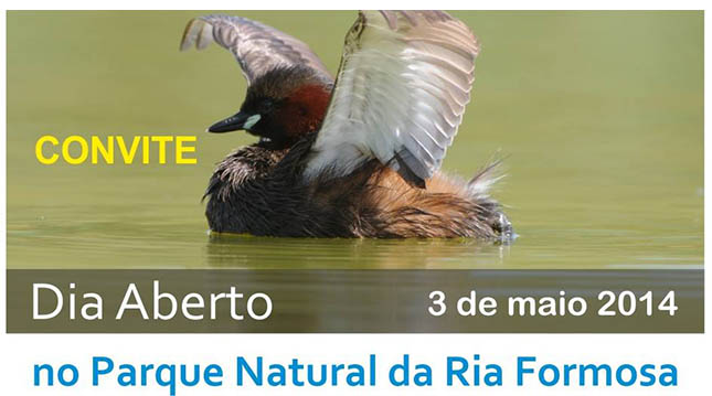 Dia aberto do Parque Natural da Ria Formosa