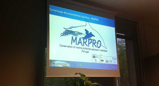 """Health and conservation of marine ecosystems"""