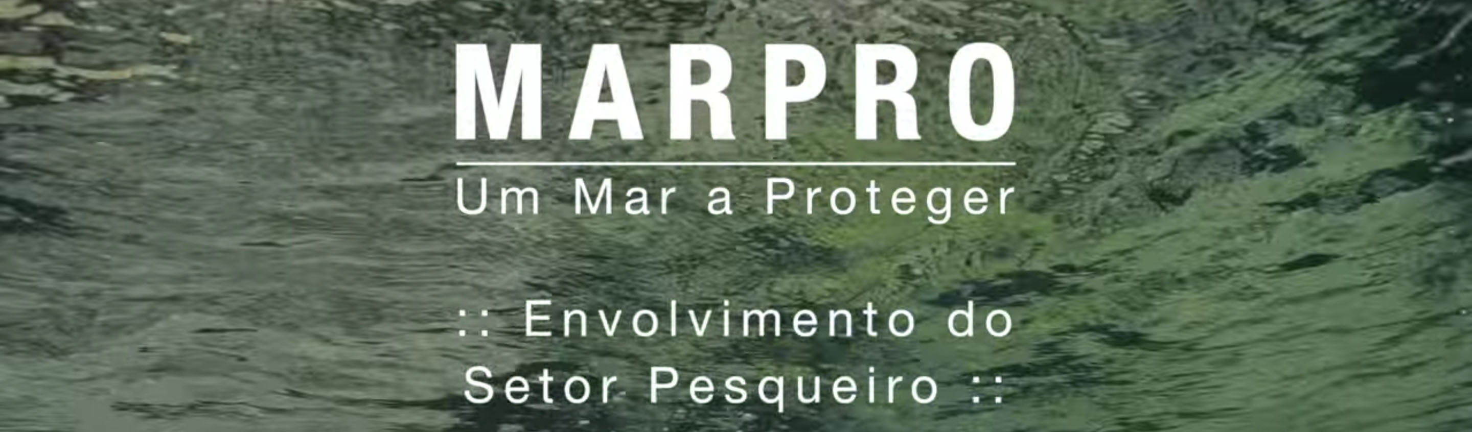 LIFE+ MarPro Documentary - Teaser 2: Fishing Industry Involvement