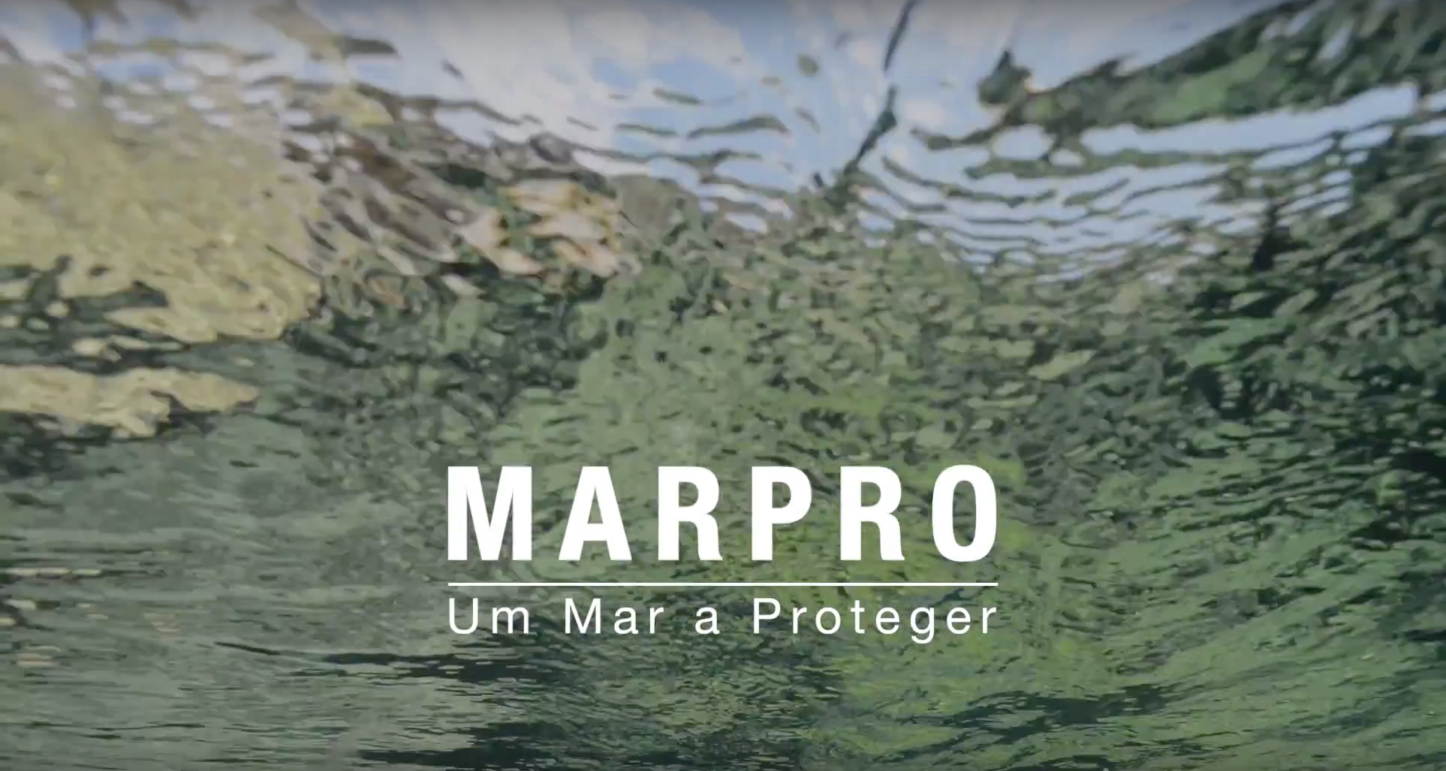 LIFE+ MarPro Documentary: A Sea to Protect