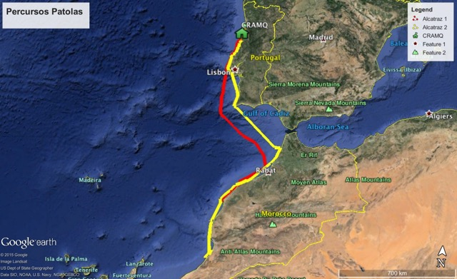 Tracking of northern gannets released by the CRAM-Q